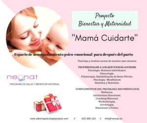 Proyecto Bienestar y Maternidad-2